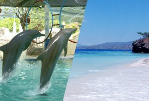 バリ島北部3泊満喫ツアー